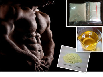 Good Quality Raw Steroid Powders & Domestic Oral or injection Boldenone Series Boldenone steroids CAS 106505-90-2 on sale