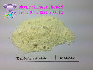 bodybuilder Steroid Trenbolone Enanthate 99% CAS 472-61-546 yellow powder